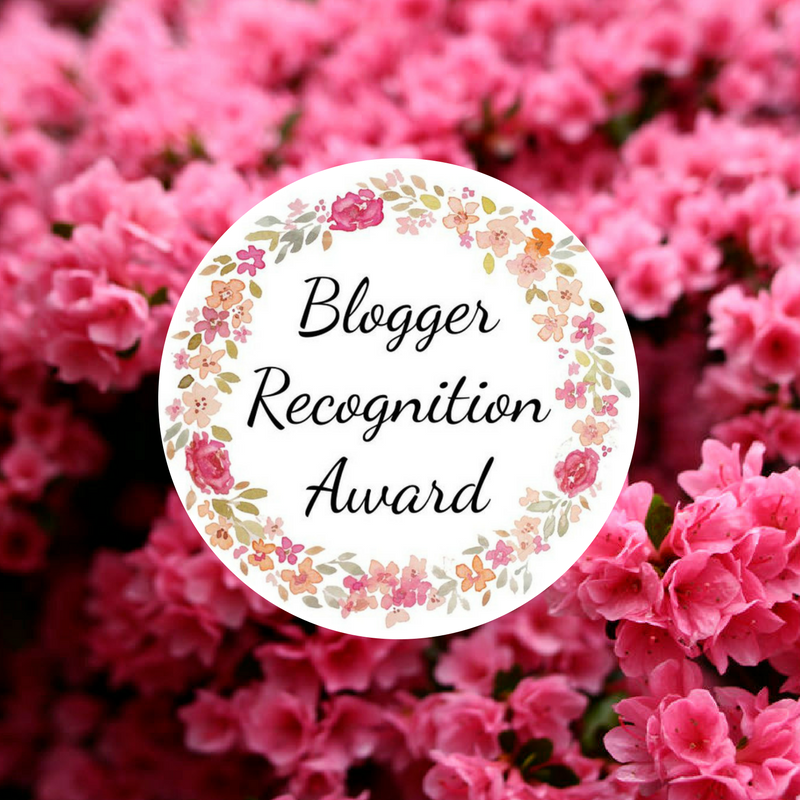 Blogger Recognition Award (1)